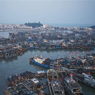 """授人以""""鱼""""——关于中国远洋渔业补贴的五个事实"""