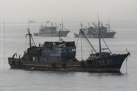 绿色和平在西非海域发现13艘渔船涉嫌非法捕捞,当地区域渔业管理亟需加强
