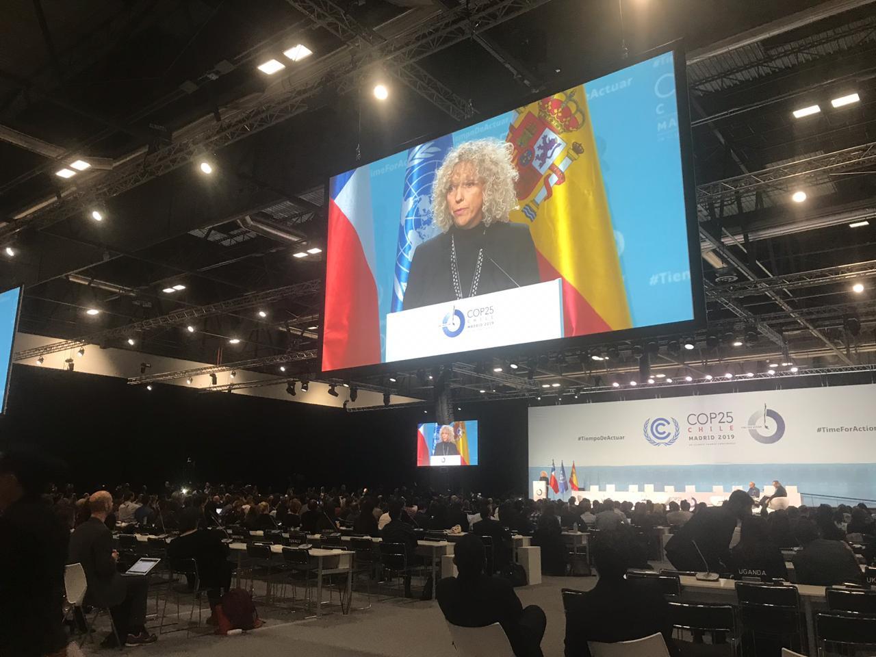 史上最长联合国气候大会闭幕:市场机制未达成共识,成果力度有限
