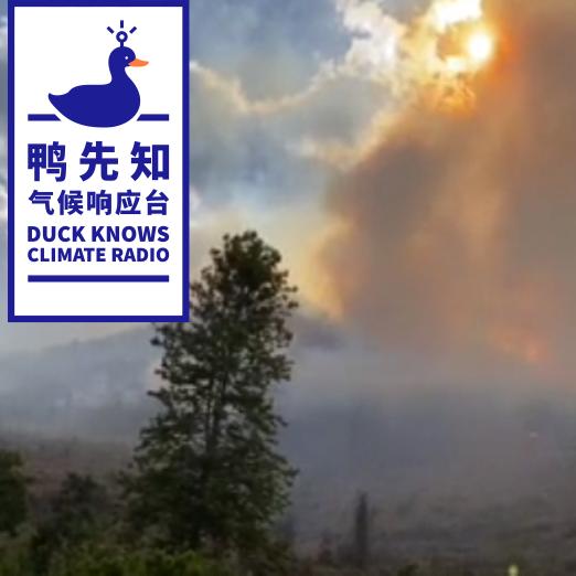 大理林火方熄,但云南面临的气候危机远不止于此