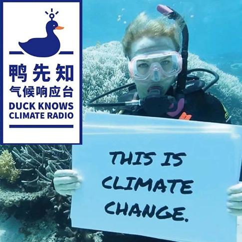 气候鸭先知 | 未来十年,用行动修复地球