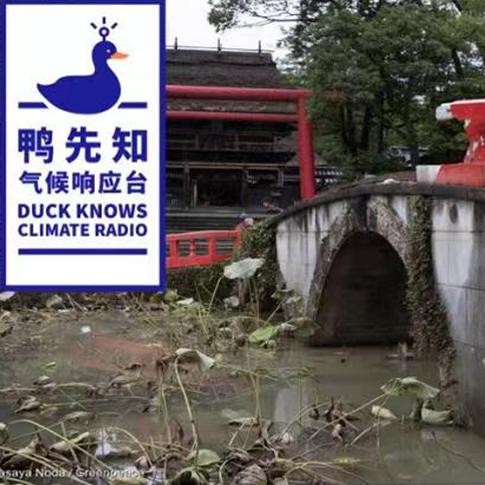 气候鸭先知 | 高温持续、暴雨侵袭,全球多地面临气候风险挑战