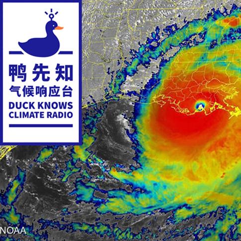 气候鸭先知 | 飓风难顶!美国遭遇历史性暴雨重创